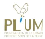 plum-150x130